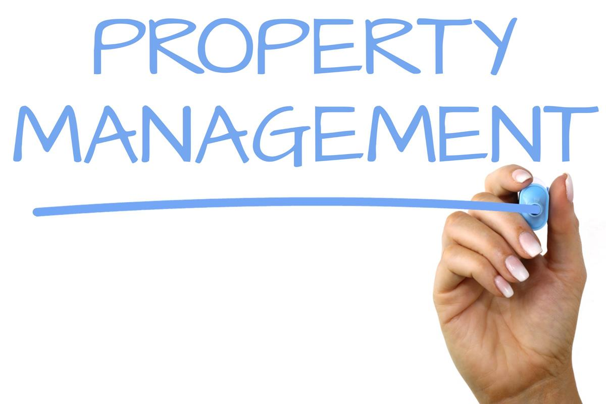 property management in Ballymena